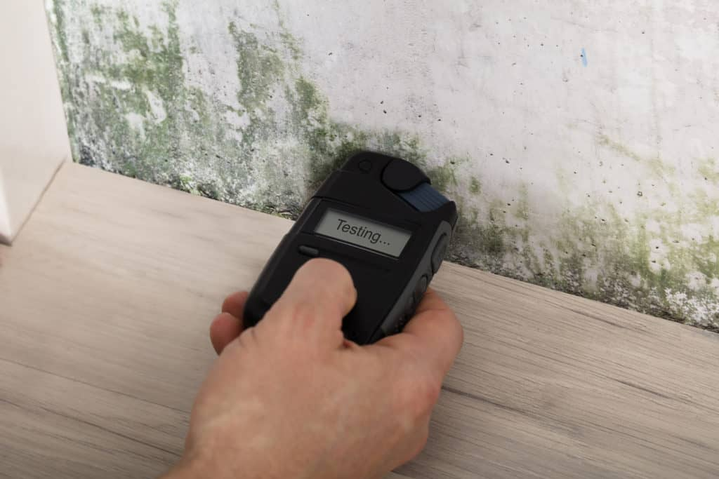 Air Sampling for Mold Inspections