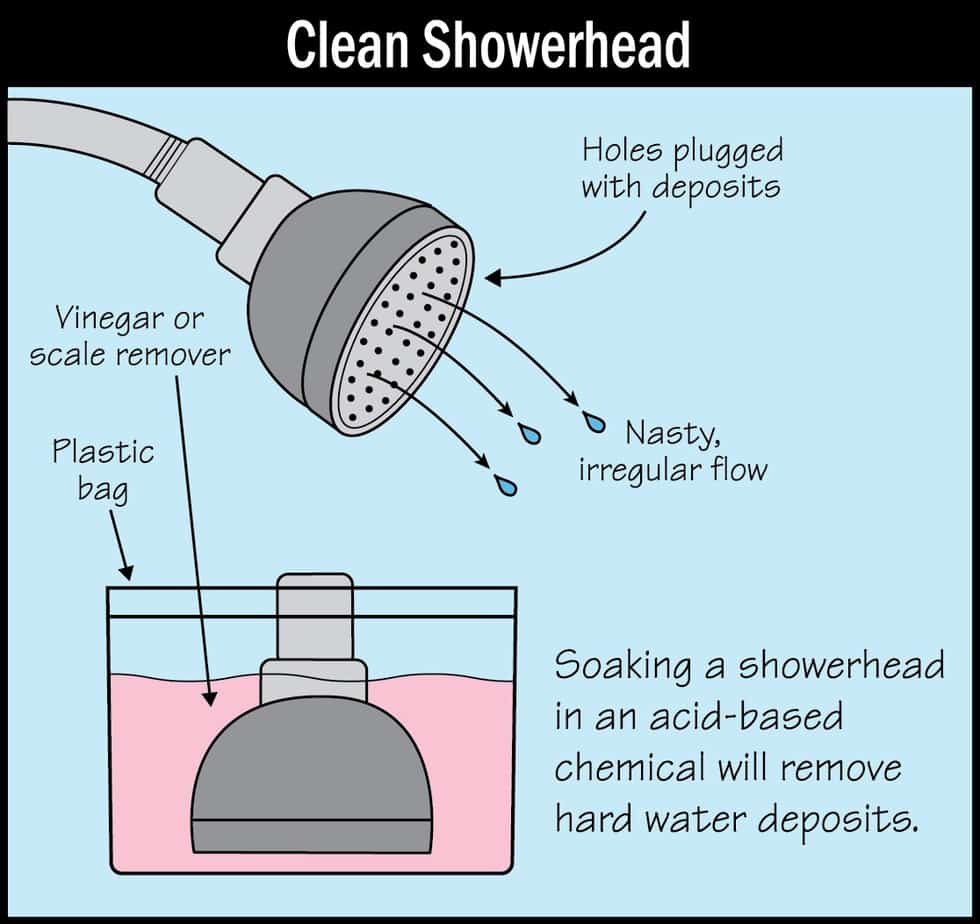 How to clean a shower head image