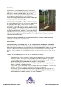 Tree Swing & Safety